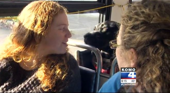 Seattle dog rides bus to dogpark