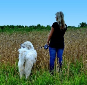 Walking is an excellent activity for both you and your dog.